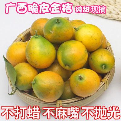 广西桂林脆皮金桔新鲜2斤/3斤/5斤纯甜无酸青黄甜金桔甜到心口