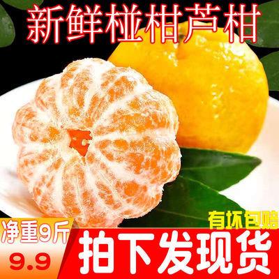【精品】四川丑橘子芦柑橘椪柑当季水果新鲜应季水果10斤整箱批发