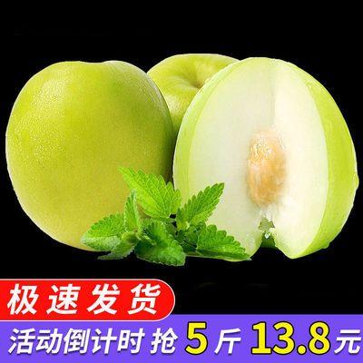 【现摘现发】台湾牛奶枣大青枣贵妃密枣孕妇冬枣脆甜新鲜水果1斤