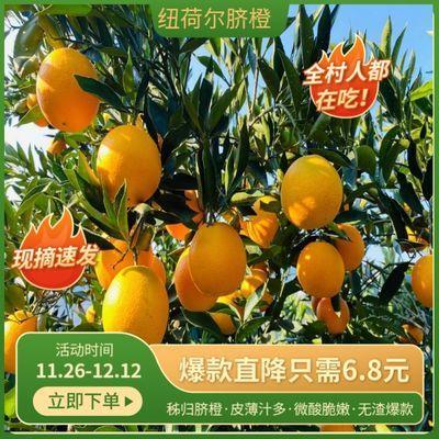 秭归脐橙纽荷尔橙子现摘应季水果3斤/5斤/9斤装水果批发 整箱