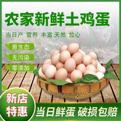 正宗农家散养土鸡蛋只发当日农村散养放养红心柴鸡蛋笨鸡蛋