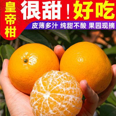广西武鸣皇帝柑新鲜水果2/10斤贡柑砂糖桔子薄皮超甜现摘发货包邮