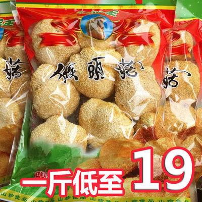 古田猴头菇新鲜烘干古田特产新鲜新货无硫猴菇产地发货农家特产