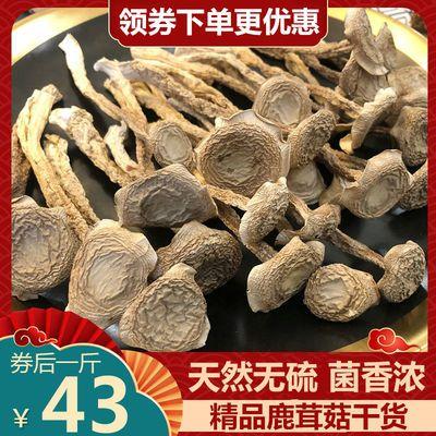 鹿茸菇干货云南特产新鲜野生菌鹿茸菇干鹿茸菌菇蘑菇香菇煲汤食材