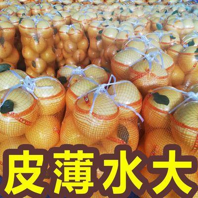【现货速发】现摘四川红心柚子批发三红蜜柚红柚红肉新鲜水果包邮