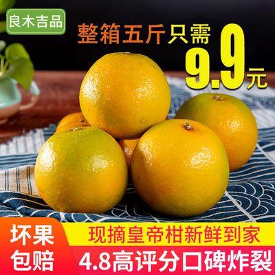 广西皇帝柑桔子10斤新鲜水果包邮当季整箱蜜桔贡柑大果橘子2-10斤