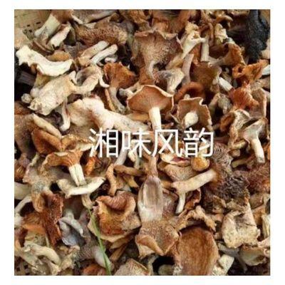 【现货】2020年新货湖南邵阳邵东农家野菇子野蘑菇干货野生干菌子