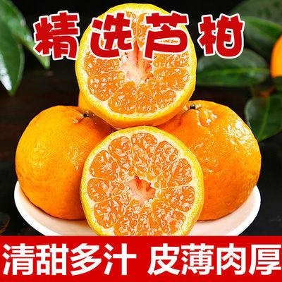 永春芦柑桔子新鲜椪柑橘当季现摘蜜橘子丑桔孕妇水果甜桔子整箱