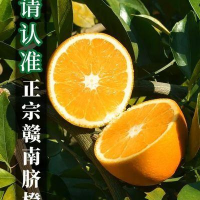 江西赣南脐橙当季新鲜水果手剥甜橙应季冰糖果冻橙2/5/10斤装包邮