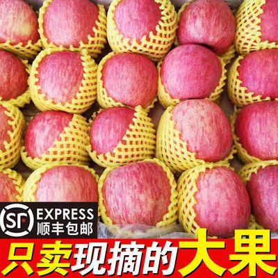 【顺丰现货】山西红富士冰糖心丑苹果脆甜新鲜水果5/9斤大果80mm