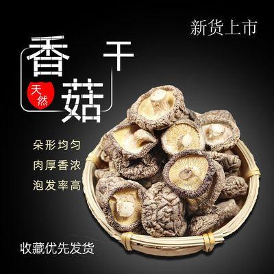 农家肉厚香菇干西峡新货/大片/碎片批发蘑菇散装土特产野生煲汤
