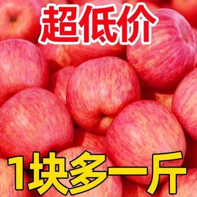 超脆甜陕西冰糖心红富士苹果当季新鲜水果批发整箱丑苹果3/5/10斤
