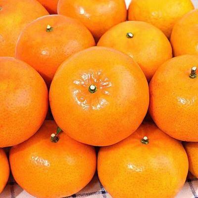 广西武鸣无核沃柑新鲜水果当季5-10斤整箱包邮蜜橘子糖贡柑皇帝柑