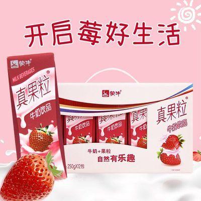 蒙牛真果粒牛奶蓝莓味250ml*12盒整箱早餐营养乳酸菌饮品9-12月产