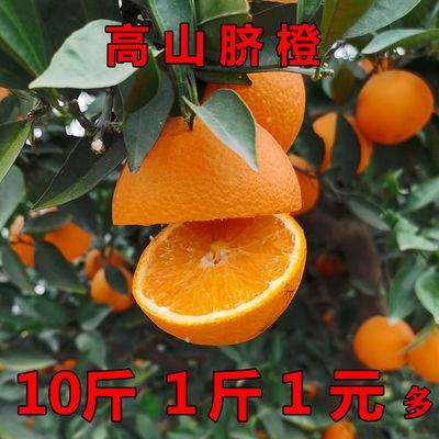 高山脐橙9斤大果纽荷尔橙子东坡香橙5斤现摘比赣南脐橙皮薄汁多