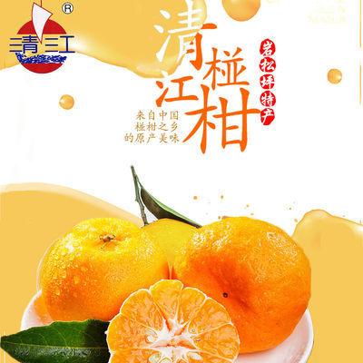 清江椪柑果园现摘长阳岩松坪应季新鲜丑橘孕妇儿童可食用超甜芦柑