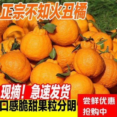 【顺丰包邮】四川蒲江正宗丑橘不知火5/9斤丑八怪丑桔新鲜水果