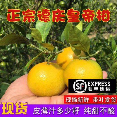顺丰包邮德庆皇帝柑贡柑桔子水果新鲜当季整箱大果薄皮橘蜜桔柑橘