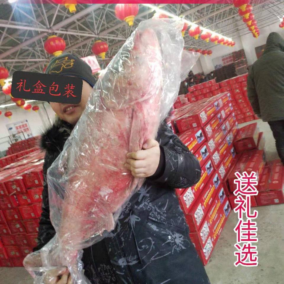 查干湖冬捕鱼野生胖头鱼鲤鱼草鱼鲢鱼鳙鱼礼盒包装淡水鱼包邮鱼头