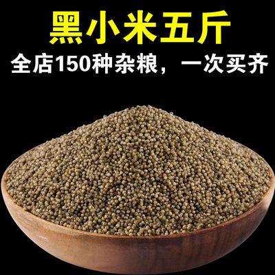 黑小米小黑米粗粮小黄米新米食用小米孕妇产妇五谷杂粮黑小米粗粮