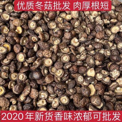 西峡精选无根干香菇100g金钱菇冬菇干货批发农家土特产肉厚小香菇