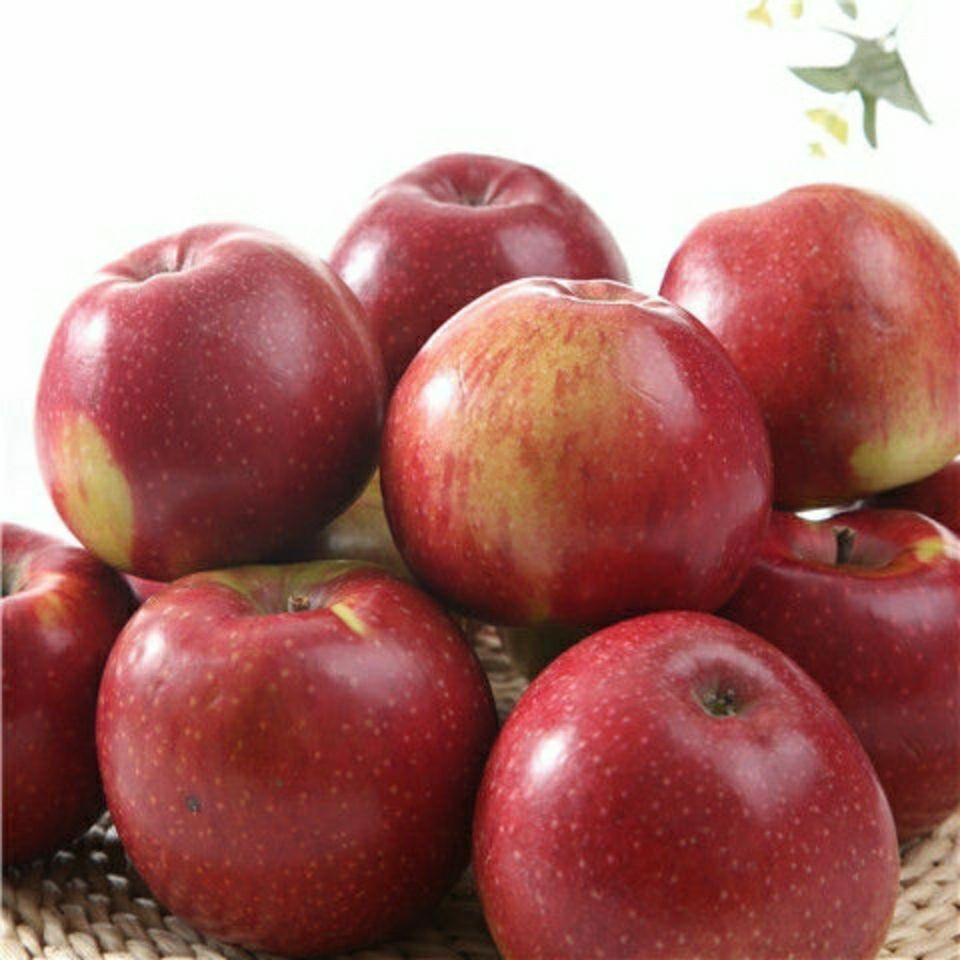 【多仓发货】苹果水果新鲜3斤装单果75mm起现摘口感酸甜整箱包邮