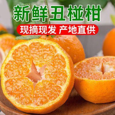 宜昌清江椪柑新鲜水果蜜桔现摘现发孕妇桔子酸甜柑橘应季芦柑整箱