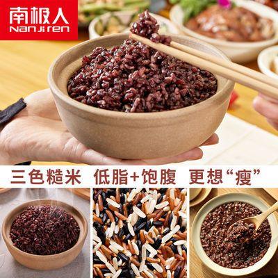 南极人五谷杂粮胚芽米三色糙米减脂代餐饭糙米饭健身粗粮低脂饱腹