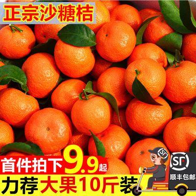 【正宗砂糖橘】沙糖桔新鲜水果当天现摘香甜多汁蜜橘蜜桔1/10斤装