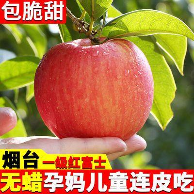 山东烟台红富士苹果5斤装水果10斤装脆甜栖霞新鲜整箱超大果一级