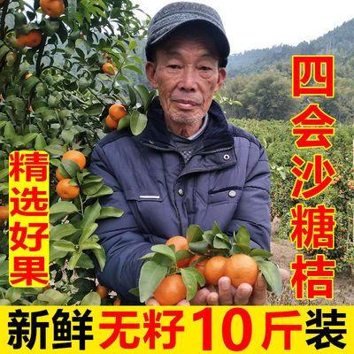 【纯甜】正宗四会砂糖橘沙糖桔无核薄皮橘子桔子孕妇水果现摘现发