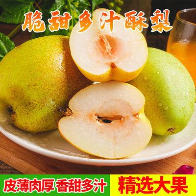【清仓处理】正宗新疆库尔勒香梨水果红酥香梨薄皮整箱批发价