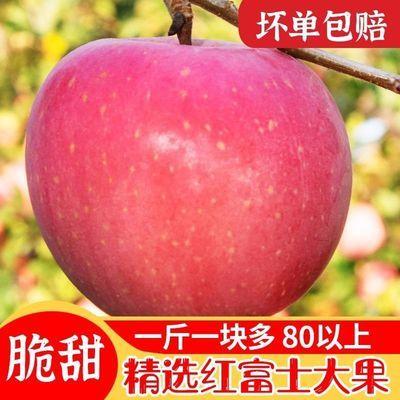新鮮蘋果紅富士山東紅富士蘋果當季新鮮時令水果5斤裝整箱包郵