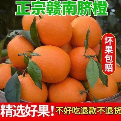 【现摘现发】江西赣南脐橙当季新鲜水果孕妇橙子手剥橙脐橙榨汁橙