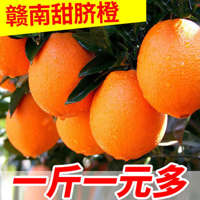 【精选品质】正宗赣南脐橙江西橙子水果超甜冰糖橙子薄皮整箱批发