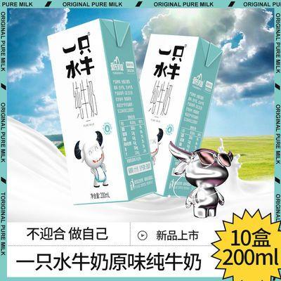 皇氏乳业 一只水牛高钙奶纯牛奶调制水牛奶早晚餐营养奶整箱