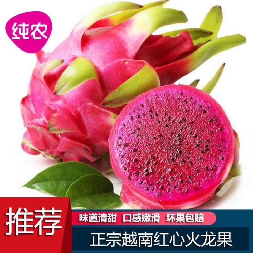越南红心火龙果包邮新鲜水果当季大果整箱批应季红肉10礼盒