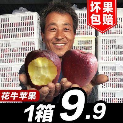 甘肃天水山地花牛苹果10斤新鲜水果蛇果整箱包邮当季3斤5斤非富士