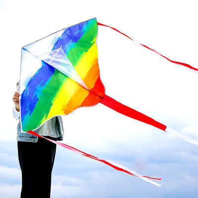 潍坊新款风筝 彩虹好飞风筝儿童成人初学者易飞 带线轮成人