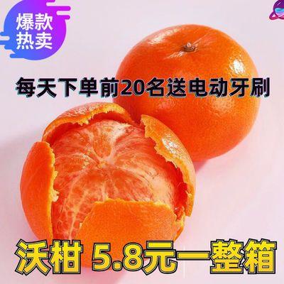 正宗广西武鸣沃柑橘子新鲜水果5斤10斤桔子沃柑批发