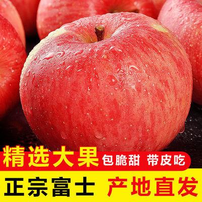 苹果新鲜当季整箱3斤/5斤/10斤红富士应季苹果冰糖心脆甜苹果包邮