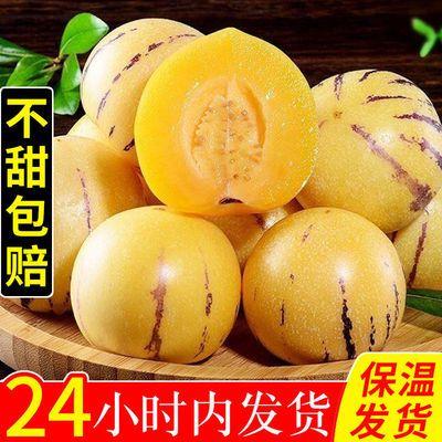 【保温箱装】云南石林人参果圆果2/5/10斤新鲜水果长果非甘肃民勤