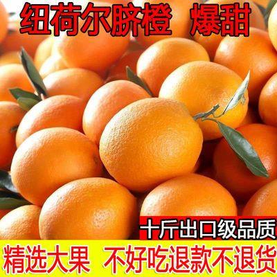 现摘现发高山纽荷尔脐橙子当季新鲜水果爆甜多汁非赣南脐橙10斤装
