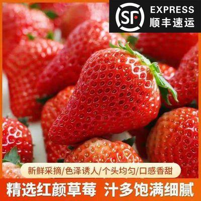 【顺丰包邮】草莓新鲜水果牛奶草莓红颜草莓当季孕妇水果现摘现发