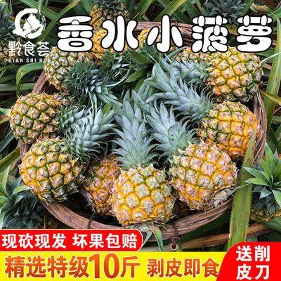 【特级精选】送削皮刀 云南香水小菠萝现摘新鲜水果3/5/9整箱批发