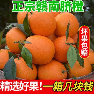 【现摘现发】正宗青秋脐橙当季新鲜水果孕妇橙子手剥橙脐橙榨汁橙