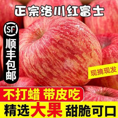 【顺丰包邮】陕西洛川苹果红富士苹果正宗脆甜冰糖心苹果水果批发