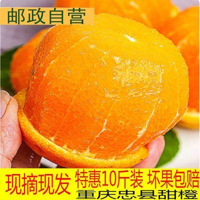 重庆忠县现摘现发新鲜脐橙水果橙子季橙整箱应季手剥冰糖无籽甜橙