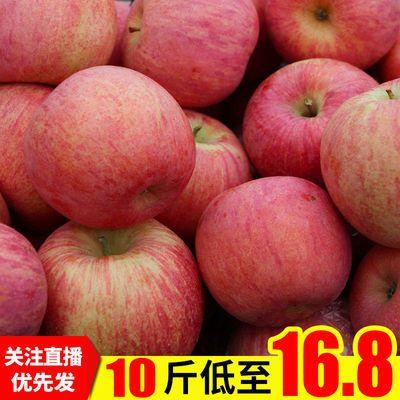 【批发价】精选山西冰糖心丑苹果水果当季新鲜红富士脆甜宝宝果10