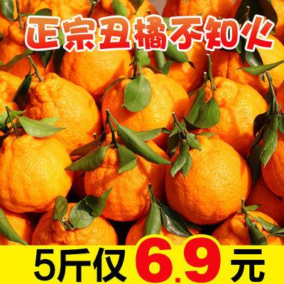 正宗四川丑橘不知火丑柑丑八怪桔子柑橘橘子新鲜水果整箱包邮批发